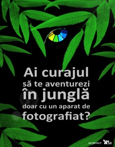 DigiPhoto 2009