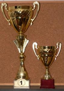 Cupe Raliul Iasului 2010